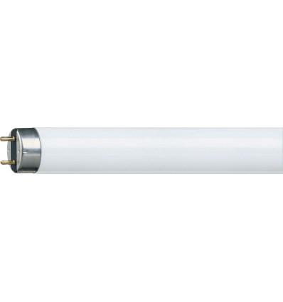 TL-D Super 80 23W/865 G13