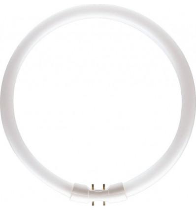 MASTER TL5 Circular 40W/827 2GX13