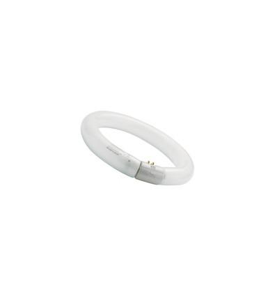 CIRCLINE T9 FC 22W/830 G10Q