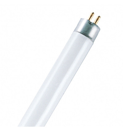 Basic T5 Short EL 8 W/640