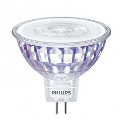 LEDspot LV Value GU5.3 MR16 5.5W 830 36D (MASTER) 35W