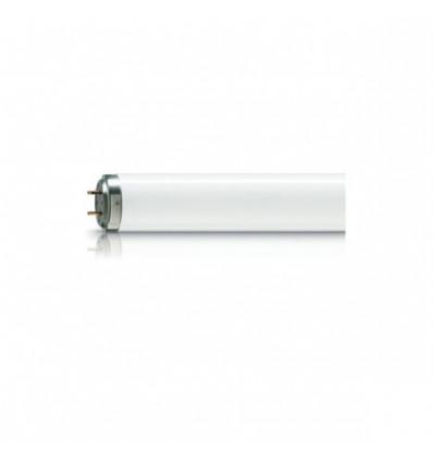 Actinic BL TL-DK - 36W/10 1SL