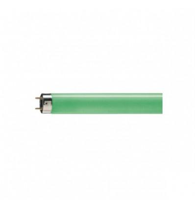 TL-D Colored 36W  1SL zielona