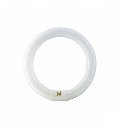 MASTER TL-E Circular Super 80 22W/840 1CT