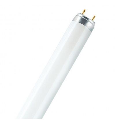 LUMILUX T8  L 58 W/865