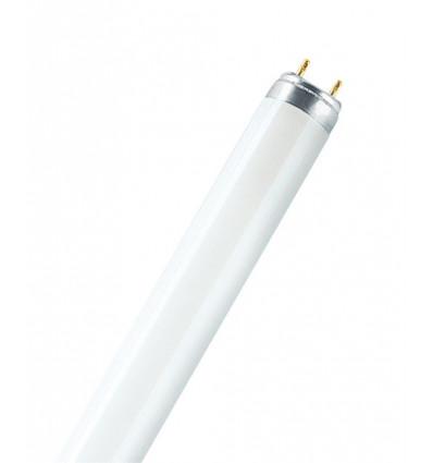 TL-D Super 80 15W/865 G13